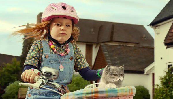 Mädchen fährt mit Katze Fahrrad